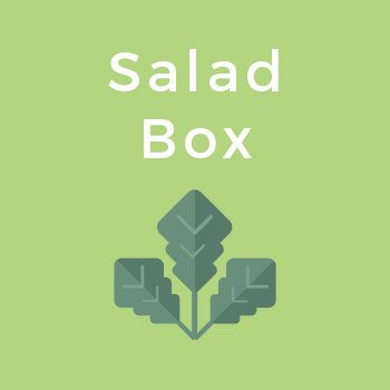 Delivered Salad Boxes